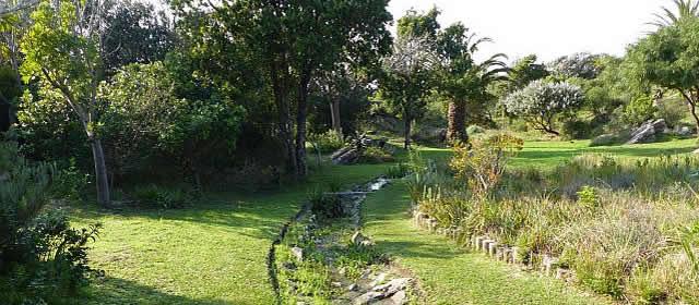 St Francis Community Garden