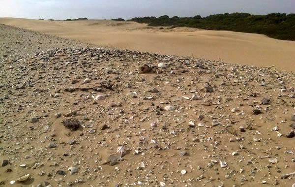 Dune middens